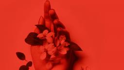 The Flower Arranger by JJ Ellis